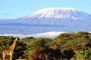 Mont kilimandjaro les plus beaux lieux du monde