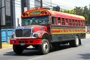 Chiken bus bresil