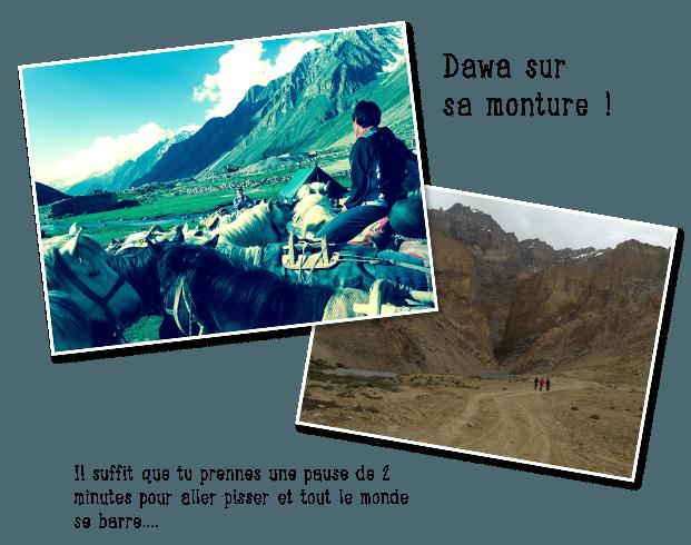 Dawa Sherpa sur sa monture