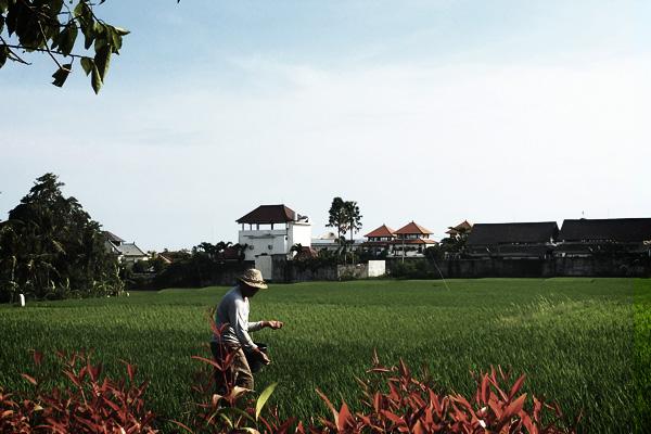 Vie à Bali