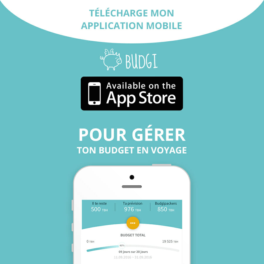 Budgi - Appli mobile pour gérer son budget